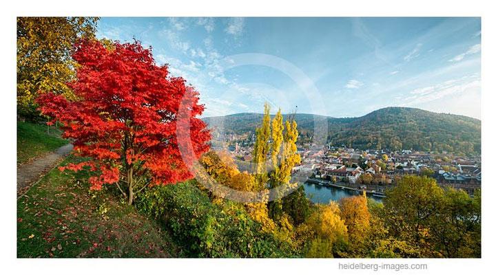Archiv-Nr. hc2015160 | Herbst am Philosophenweg
