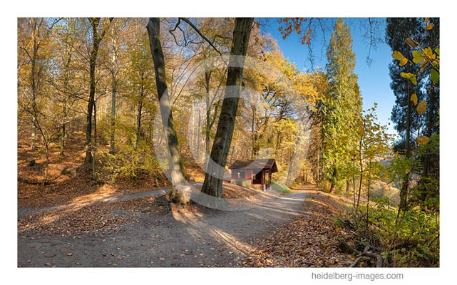 Archiv-Nr. hc2018140 / Wanderhütte auf dem Heiligenberg