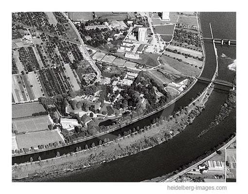 Archiv-Nr. L10_715 / Luftaufnahme vom Tiergarten 1964