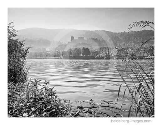 Archiv-Nr. h2012132 / Neckarufer mit Blick zum Schloss