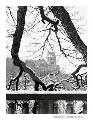 Archiv-Nr. h6503 / Verschneite Baumäste mit Sicht auf das Heidelberger Schloss