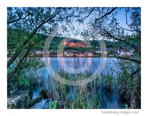Archiv-Nr. hc2016115 / Blick vom Neckarufer auf die Altstadt mit Schloss