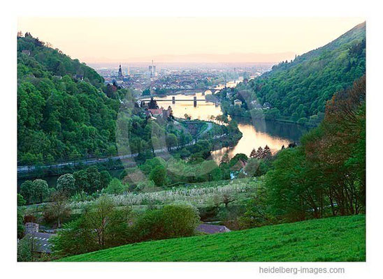 Archiv-Nr. hc2000127 / Blick vom Köpfel in die Rheinebene