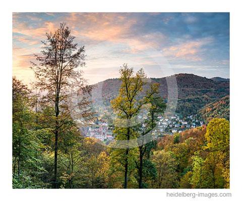 Archiv-Nr. hc2016146 / Herbstliches Heidelberg