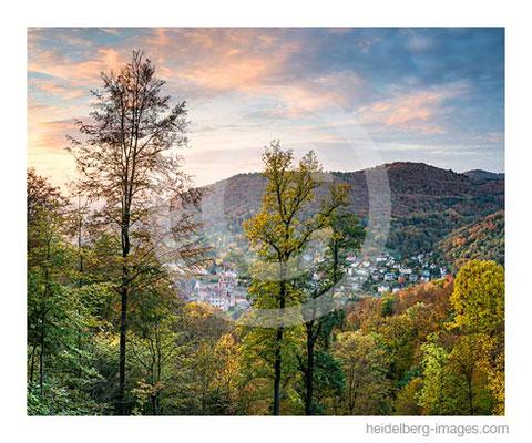 Archiv-Nr. hc2016146 / Heidelberger Schloss und Herbstwald
