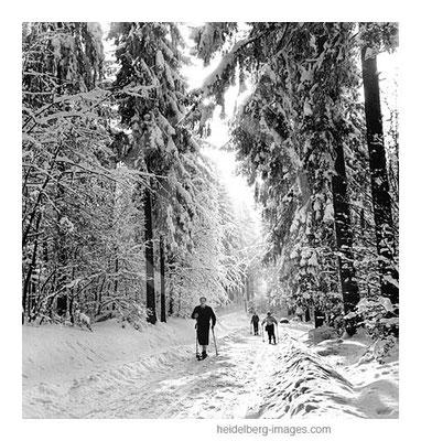 Archiv-Nr. h14/3 Skipiste vom Königstuhl bis in die Weststadt