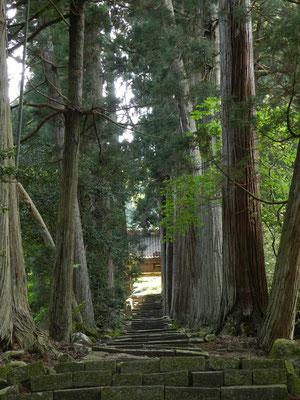 清水寺(せいすいじ)その1
