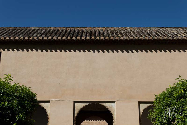 La sega senza il falegname - (Granada 2014)