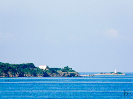 Cilento - Punta Licosa - (2012)