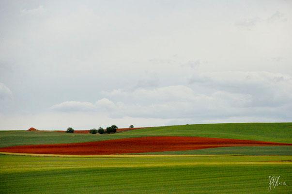 Terra e nuvole n° 2 - Navarra  - (2012)