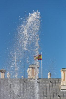 Una giornata ventosa - (Aranjuez 2015)