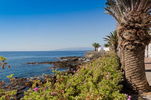 Paesaggio costiero - Alcalà de Isora - Tenerife - (2019)