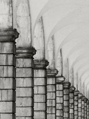 Padula - Certosa di San Lorenzo n° 2 - (2011)
