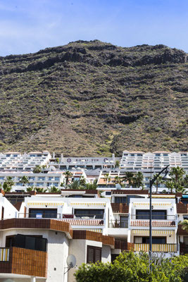 Squallore pedemontano - Tenerife  - (2015)