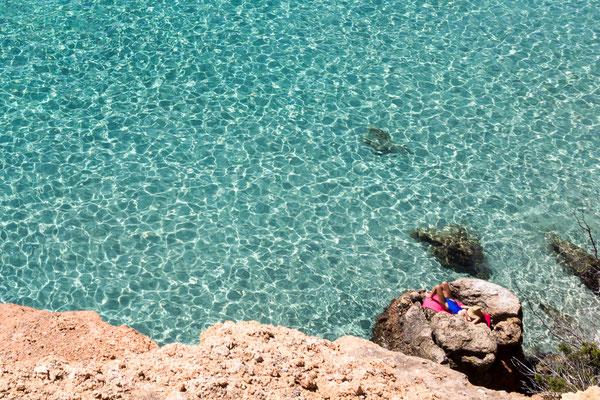 La lucertolina - Cala Saladeta - Ibiza - (2017)