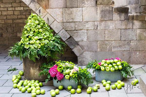 Le mele e i fiori - (Barcellona 2014)