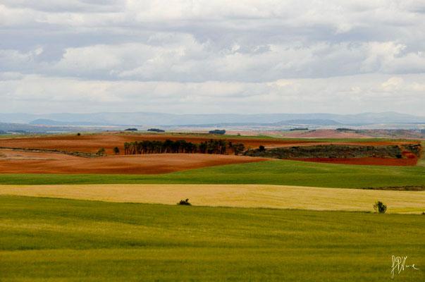 Terra e nuvole n° 1 - Navarra  - (2012)