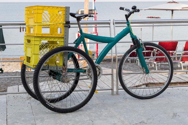 Il ciclista artigiano - Sapri - (2020)