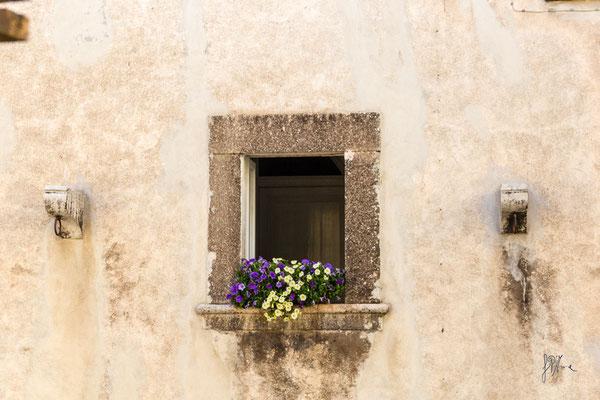 Pietra e fiori - Scanno  - (2016)