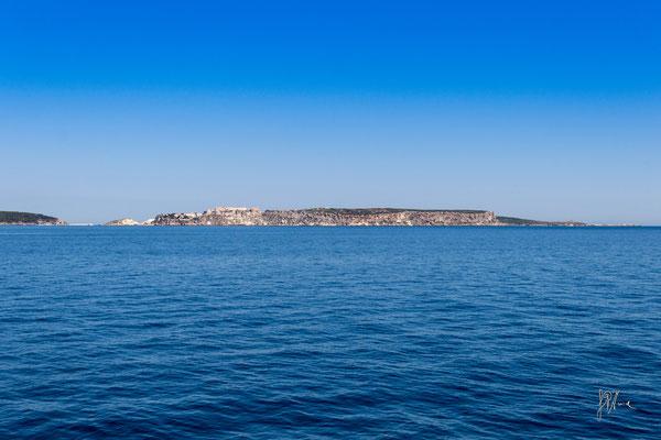 Isola San Nicola - Isole Tremiti - (2016)