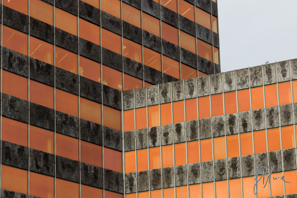 I neon arancioni - (Bilbao 2016)