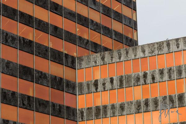I neon arancioni - Bilbao  - (2016)