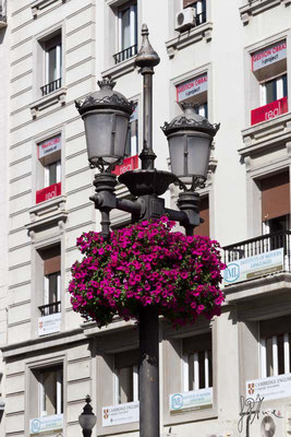 Granada - Lampione floreale  - (2014)