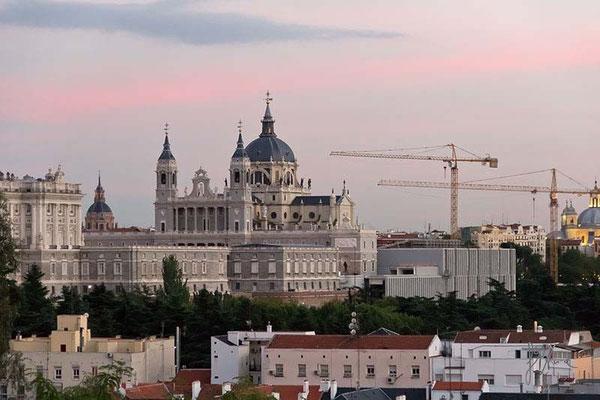 Le gru a Palazzo Reale - Madrid  - (2010)