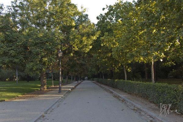 Madrid - Parco del Retiro - (2014)