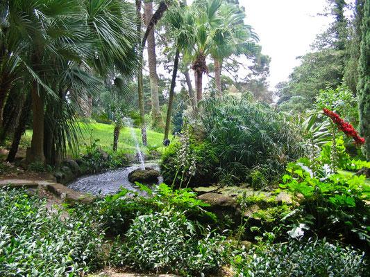 Il giardino inglese - (Caserta 2008)