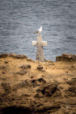 La vita sopra la morte - Biarritz - (2017)