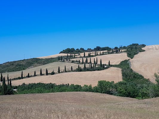 Val d'Orcia - (2020)