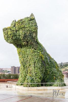 Bilbao - Il grande Puppy - (2016)
