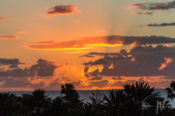 Fuoco canario - (Lanzarote 2017)