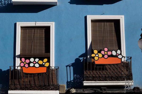 Non i soliti gerani... - (Granada 2014)