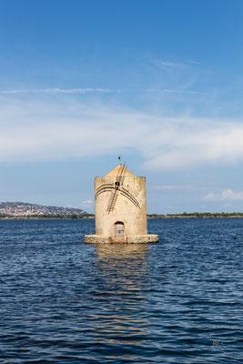 Pietra, acqua e legno - Laguna di Orbetello - (2018)