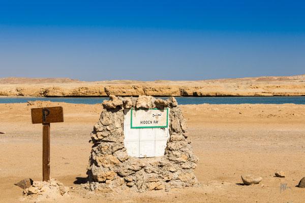 Fermata del bus? - Egitto - (2020)