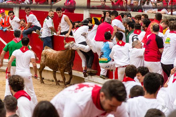 La grande fuga - Pamplona - (2017)