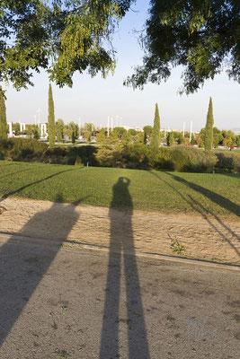 Il paese delle ombre lunghe - Madrid  - (2013)