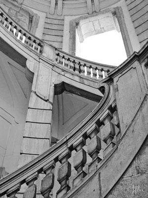 Padula - Certosa di San Lorenzo n° 1 - (2011)