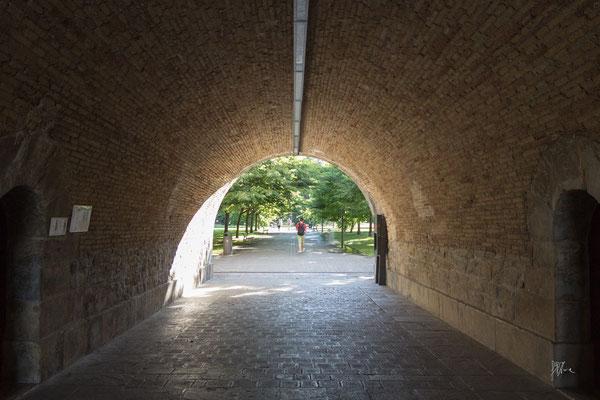 C'è vita in fondo al tunnel  - Pamplona - (2019)