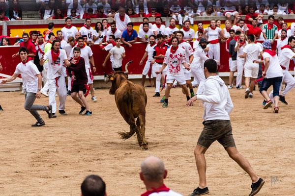 L'egocentrico - Pamplona - (2017)