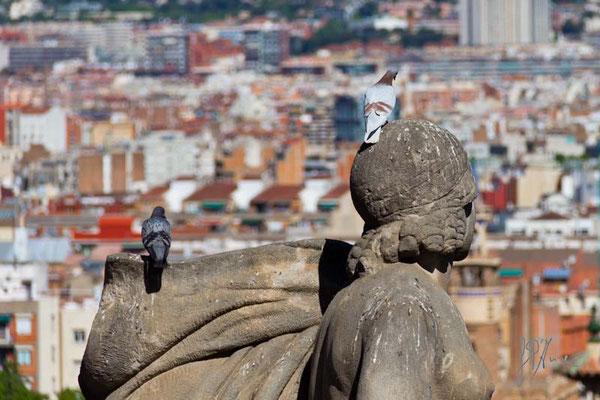 E' proprio un bel panorama - Vero? - Barcellona  - (2014)