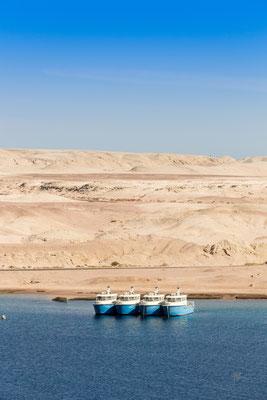 In fila per quattro - Egitto - (2020)