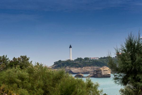 Piante, mare e roccia - Biarritz - Paesi Baschi Francesi - (2017)