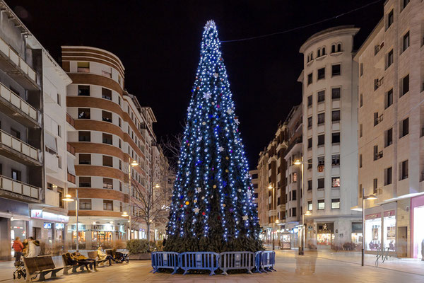L'albero di Natale - (Pamplona 2016)