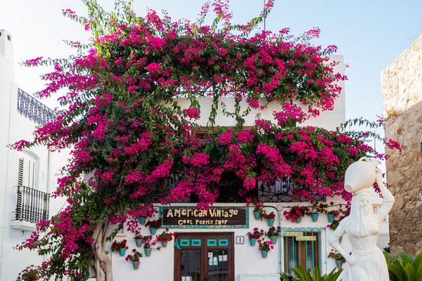 L'abbraccio - Andalusia - (2019)
