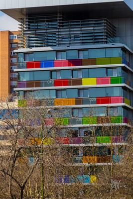 Le hanno fatte di tutti i colori e danno pure i numeri... - Madrid  - (2015)