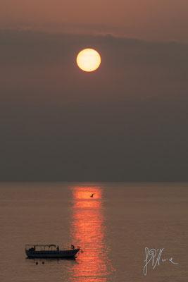 Il gabbiano e la barca - (Praia 2015)
