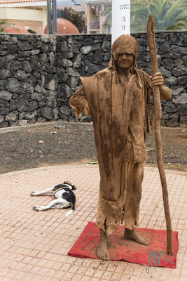I due mimi - (Tenerife 2015)